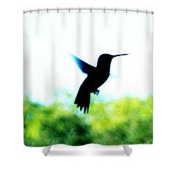 Shower Curtain featuring the digital art Hummingbird Hover by Lizi Beard-Ward
