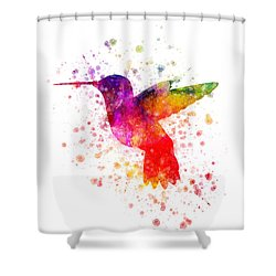 Hummingbird In Color Shower Curtain by Aged Pixel