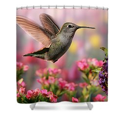 Hummingbird In Colorful Garden Shower Curtain