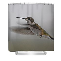 Shower Curtain featuring the photograph Hummingbird  by Leticia Latocki