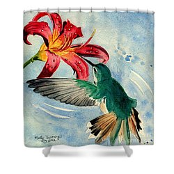 Hummingbird Shower Curtain by Melly Terpening