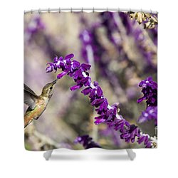 Shower Curtain featuring the photograph Hummingbird Collecting Nectar by David Millenheft