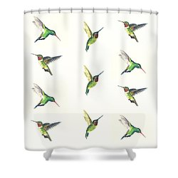 Hummingbirds Number 2 Shower Curtain by Michael Vigliotti