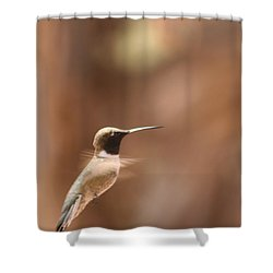 Shower Curtain featuring the photograph Hummmmm by Nola Lee Kelsey