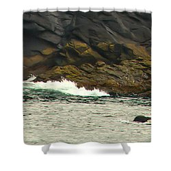 Humpback Whale Shower Curtain by Debra  Miller
