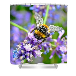 Hungry Bee Shower Curtain by Tine Nordbred