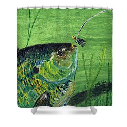 Hungry Bluegill Shower Curtain