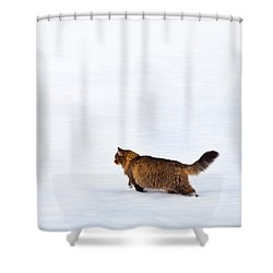 Hunter At Work Shower Curtain by Theresa Tahara