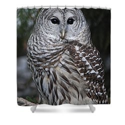 Hunter Shower Curtain by Sharon Elliott