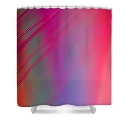 Hush Shower Curtain