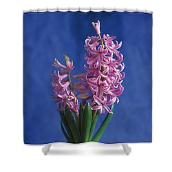 Hyacinth Shower Curtain by Lana Enderle