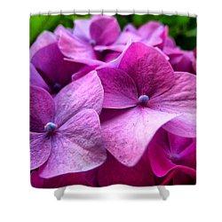 Hydrangea Bliss Shower Curtain