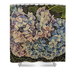 Hydrangea Blossoms Shower Curtain