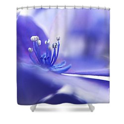 Hydrangea Closeup Shower Curtain