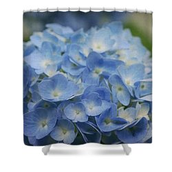 Hydrangea Solitude Shower Curtain
