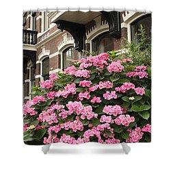 Hydrangeas In Holland Shower Curtain by Carol Groenen