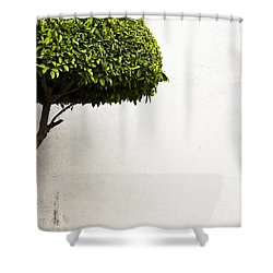 Hypnotic Tree Shower Curtain