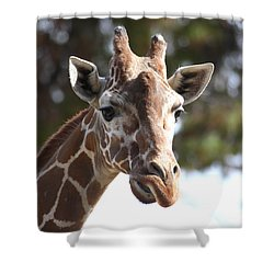 Shower Curtain featuring the photograph I Am A Giraffe by Ruth Jolly