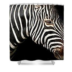 I Am A Zebra Shower Curtain