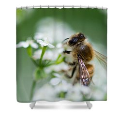 I Am Busy - Featured 3 Shower Curtain by Alexander Senin
