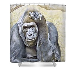 I Am In Big Trouble Shower Curtain
