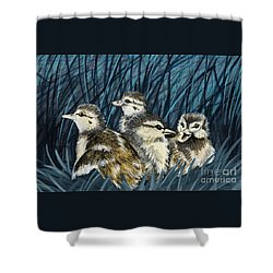 Spring Is Right Around The Corner Shower Curtain