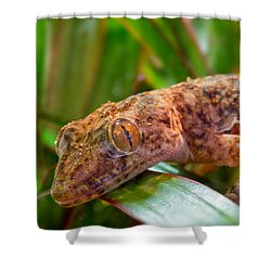 I Am Looking At You Sir Madam Shower Curtain