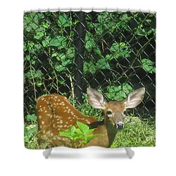 I Can Hear You Shower Curtain