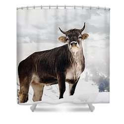 I Don't Like Snow Shower Curtain