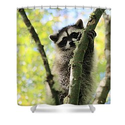 I Don't Want To Come Down Shower Curtain