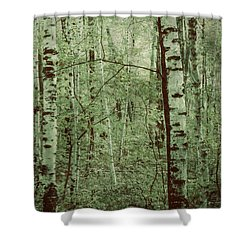 Dreams Of A Forest Shower Curtain
