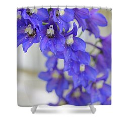 I Got The Blues Shower Curtain by Ruth Kamenev