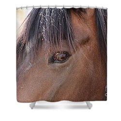 I Have My Eye On You Shower Curtain by Fiona Kennard