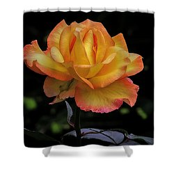 Shower Curtain featuring the photograph I Know I'm Beautiful by Hanny Heim
