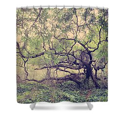 I Know You're Lonely Shower Curtain by Laurie Search