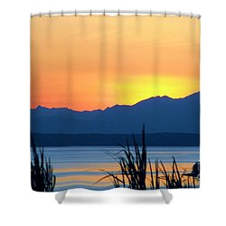 Shower Curtain featuring the photograph I Like To Color by Chris Anderson