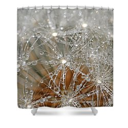 I Might've Gone To Seed But I Still Know How To Party Shower Curtain by Peggy Collins