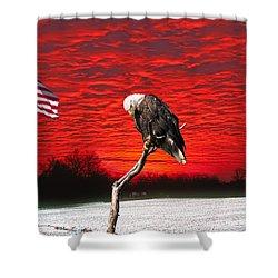 I Pledge Allegiance Shower Curtain
