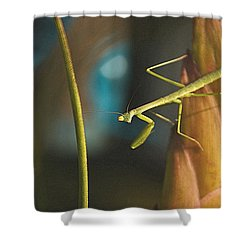 I Pray For You... Shower Curtain by Tammy Schneider