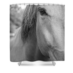 I See You Shower Curtain by Jennifer Ancker