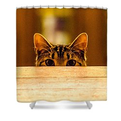 I See You Shower Curtain by Mike Ste Marie