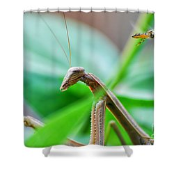 Shower Curtain featuring the photograph I See You by Thomas Woolworth