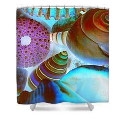 I Sell Seashells Down By The Seashore Shower Curtain by Janice Westerberg