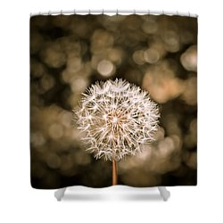 I Want To Fly Shower Curtain by Colleen Kammerer