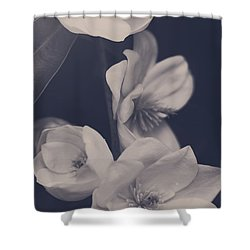 I Was Always Your Flower Shower Curtain by Laurie Search