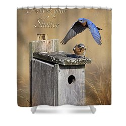 I Will Be Your Shelter Shower Curtain by Lori Deiter