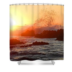 I Will Rise Again Tomorrow Shower Curtain