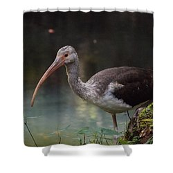 Ibis Cute Face Shower Curtain