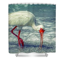 Ibis Feeding Shower Curtain by Valerie Reeves