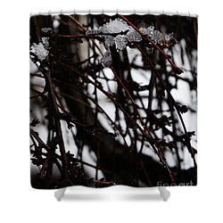 Shower Curtain featuring the photograph Ice 2 by Linda Shafer